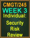 CMGT/245 Security Risk Review