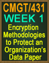CMGT/431 Threat Model Week 1
