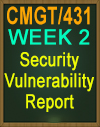 CMGT/431 Security Vulnerability Report