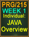 PRG/215 JAVA Overview