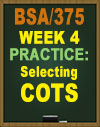 bsa 375 wk one power point Submit the microsoft® powerpoint® presentation  the final section is due in week four one section of the paper is due each week  bsa 375 week 5 learning .
