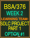 BSA/376 WORK-RELATED PROJECT ANALYSIS