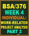 BSA/376 WEEK 4 WORK-RELATED PROJECT ANALYSIS PART 3