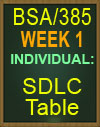 BSA/385 SDLC Table