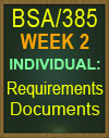 bsa/385 requirements document