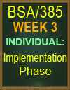 bsa/385 implementation phase tutorial
