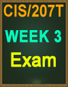 CIS/207 Wk 3 WileyPLUS Weekly Exam