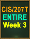 CIS/207 Wk 3 Cloud Computing or Internal IT Management