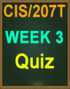 CIS/207 Week 3 Ethical Issues Facing IT Professionals