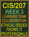 Learning Team CIS/207 Week 3 Ethical Issues Facing IT Professionals