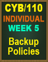 CYB/110 RUN/PLAYBOOK PART 4: SECURE DATA BACKUP GUIDELINES