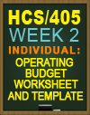 HCS/405 Operating Budget Worksheet and Template