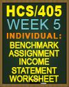 HCS/405 Benchmark Assignment—Income Statement Worksheet and Template