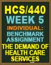 HCS/440 Week 5 Benchmark Assignment—The Demand of Health Care Services