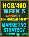 hcs/490 week 5 benchmark assignment - Marketing Strategy