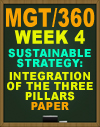 MGT/360 Week 4 Sustainable Strategy: Integration of the Three Pillars Paper