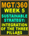 MGT/360 Week 5 Sustainable Strategy Management Assessment