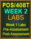 POS/408T Week 2 Pre-Assessment, Post-Assessment, Flashcards, and DQ