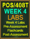 POS/408T Week 4 Pre-Assessment, Post-Assessment, Flashcards, and DQ