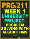 PRG/211 University Project: Problem Solving with Algorithms